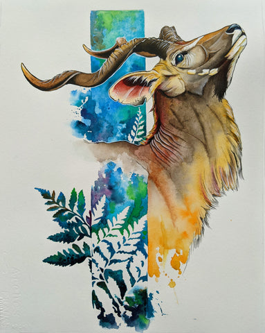 Forest kudu 11x14 watercolor print