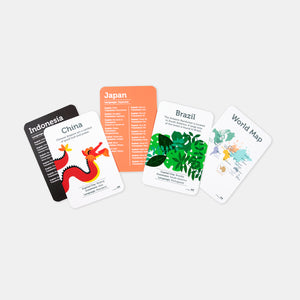 Country and Language Flash Cards