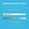 Smart Wi-Fi Edison Bulb – White