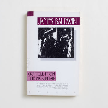 Go Tell it On The Mountain (Laurel Dell) by James Baldwin, Dell Publishing, Paperback from A GOOD USED BOOK.  1985 25th Printing Literature Black Literature