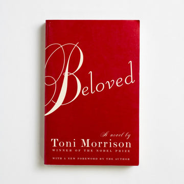 Beloved (Vintage International) by Toni Morrison, Vintage International, Trade Softcover from A GOOD USED BOOK.  2004 13th Printing Literature Literary Fiction, Black Literature