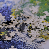 Adult Jigsaw Puzzles - 1000 pieces