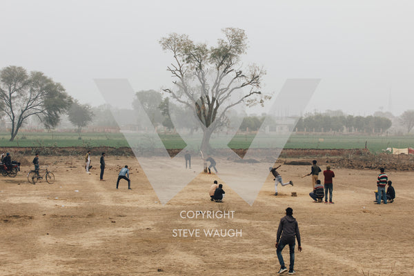 locals playing cricket at a big tree ground just off the Yamuna Expressway, Uttah Pradesh
