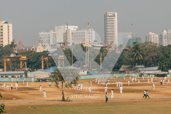 Cricket being played in an industrial area, Gymkhana Club, Mumbai. Players resemble multiple white ants