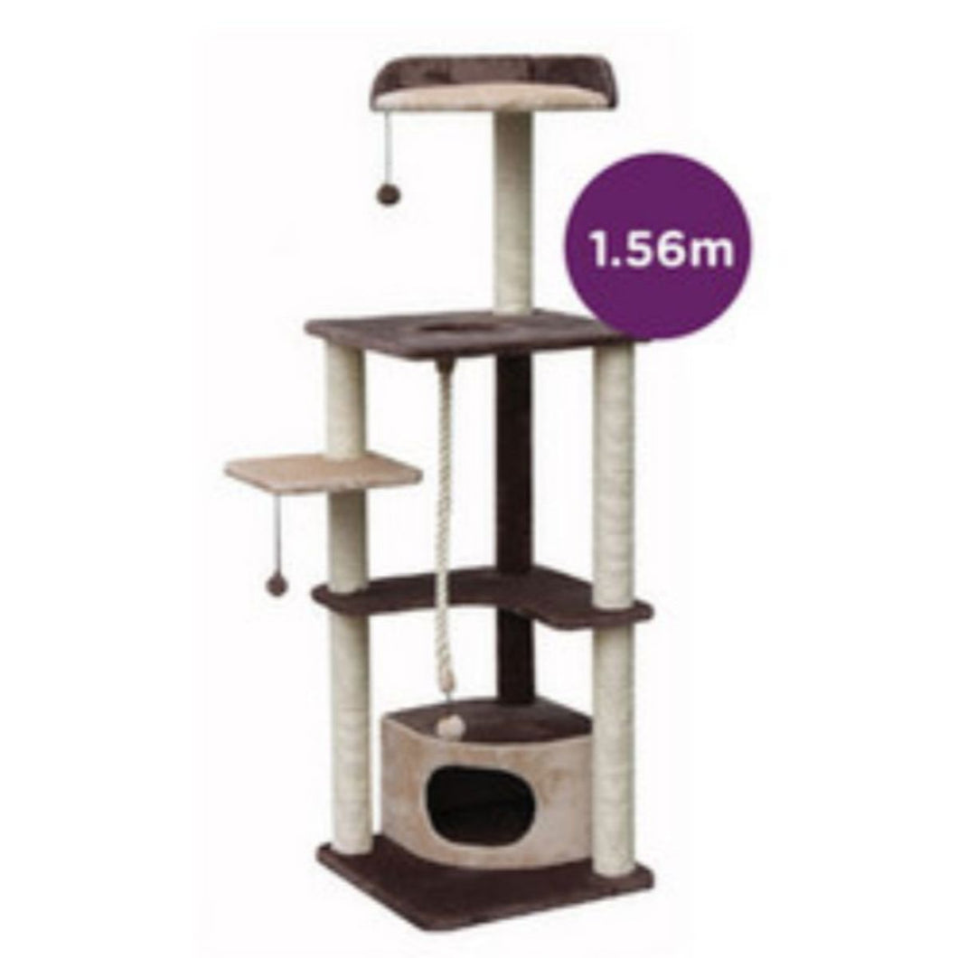 rescue cats, adopt/foster cats, cat beds, cat food, cat toys, Cat Haven, Perth Cattery - cat boarding - gifts for cat lovers