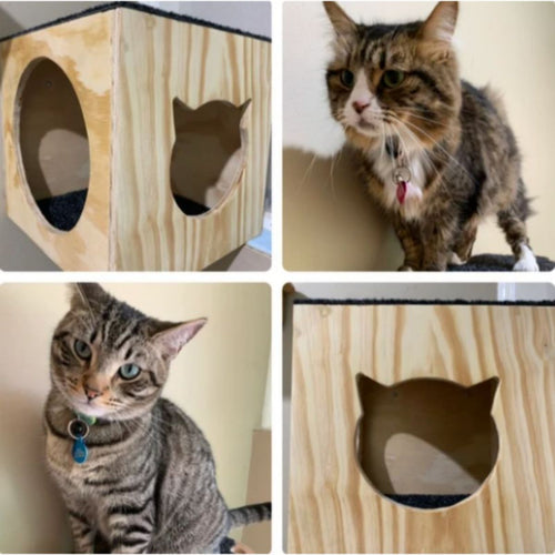 Cat furniture, cat scratchy posts, Cat Haven, Perth
