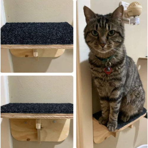 Cat furniture, cat scratchy posts, Cat Haven, Perth Cattery - cat boarding - gifts for cat lovers
