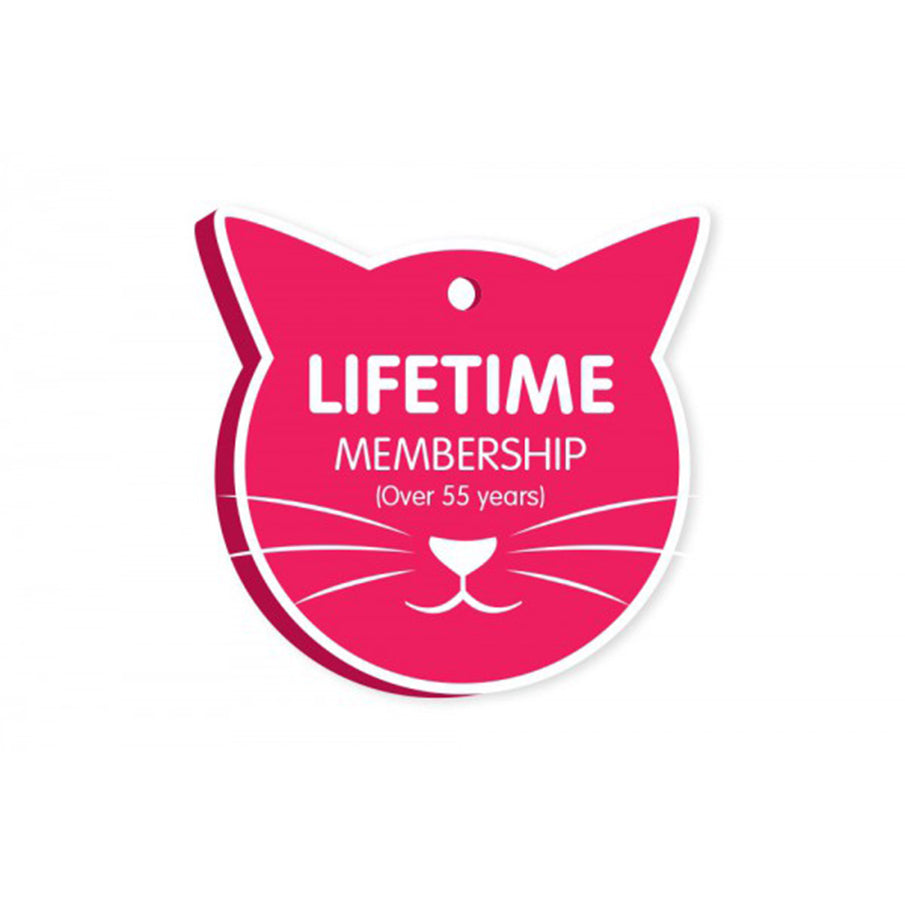cat treats, Cat Haven, Perth - cat food, cat toys Cattery - cat boarding - gifts for cat lovers