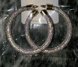 Hoops In Color Earrings