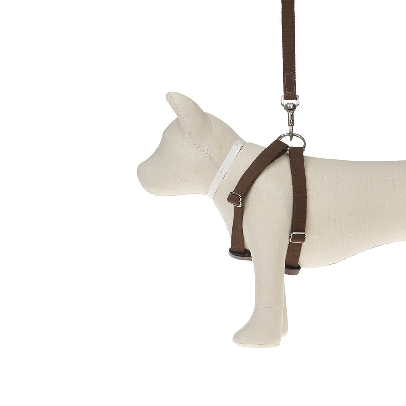 Ring Dog Harness