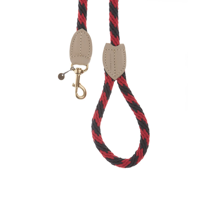 Rock Candy Dog Leash