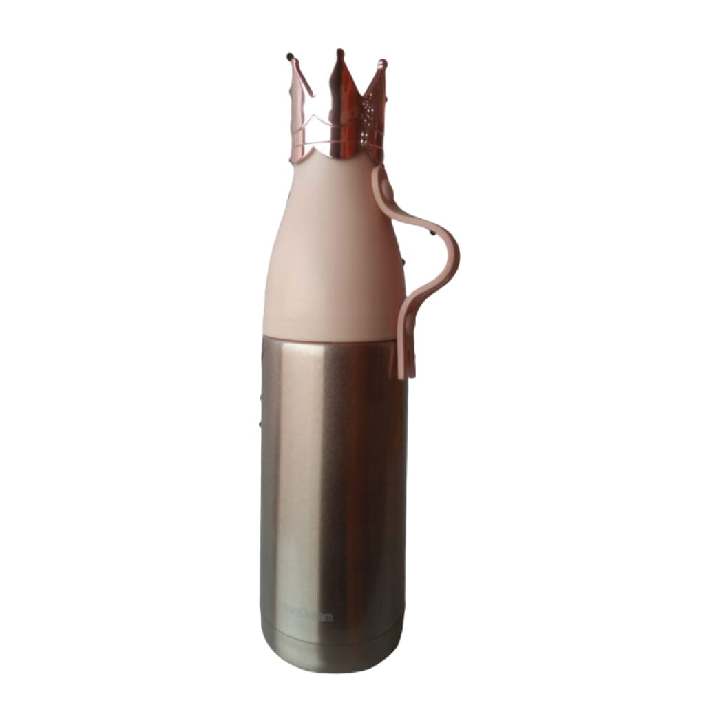 Stainless Steel Fancy Water Bottle Hot/Cold 600ml