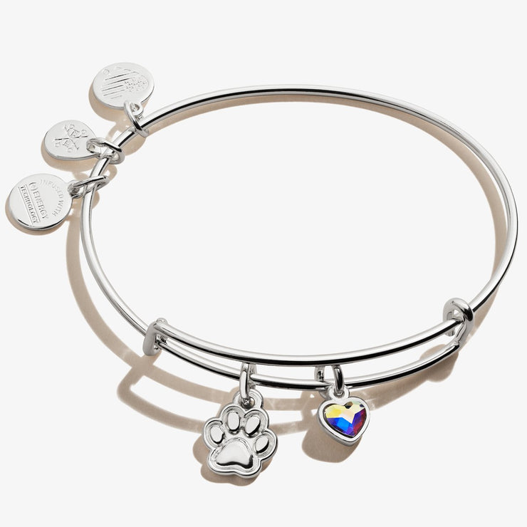 Paw Print Duo Charm Bangle