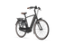 Gazelle E-Bike Grenoble C8 HMB Black (matt) Herren