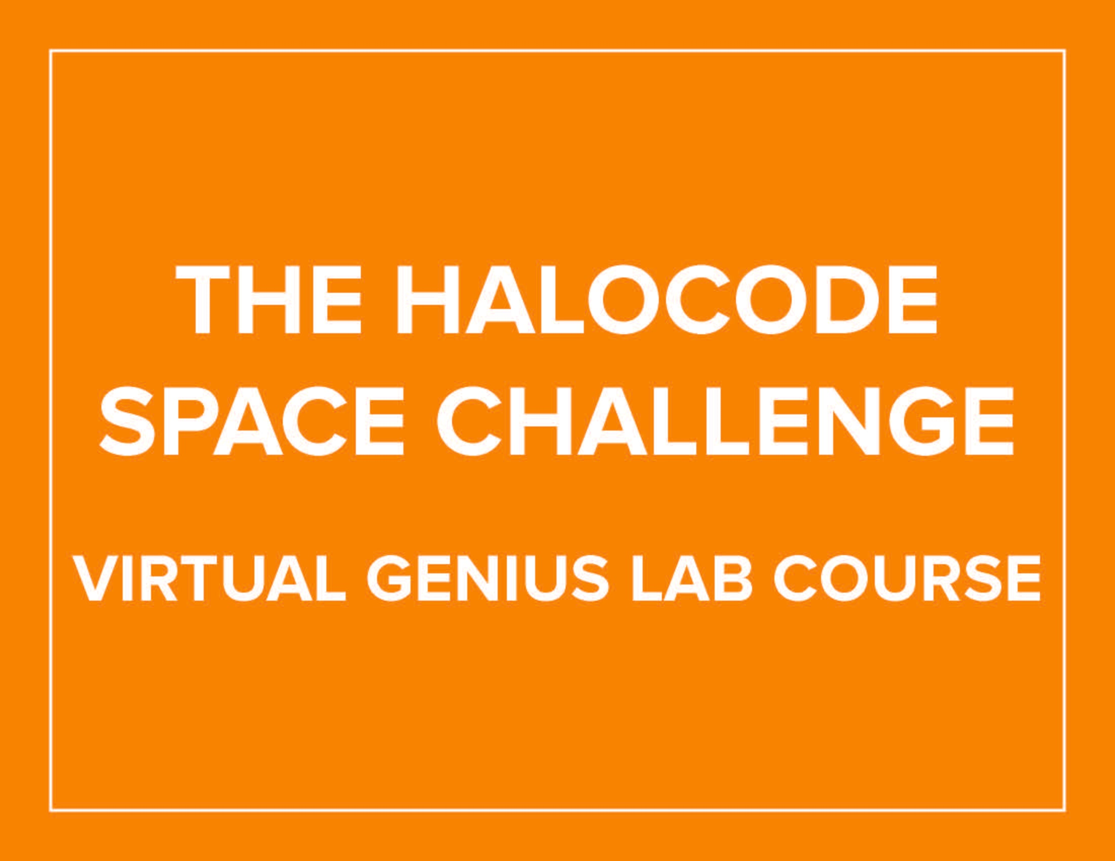The HaloCode Space Challenge-Virtual Genius Lab Course