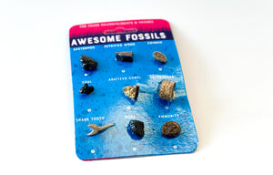 Awesome Fossils