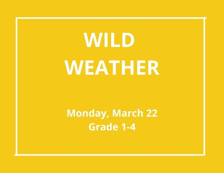 Wild Weather  -March 22, 2021 Grade 1-4