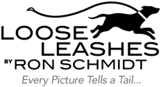Loose Leashes by Ron Schmidt INTL