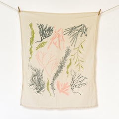 Atlantic Seaweeds Towel
