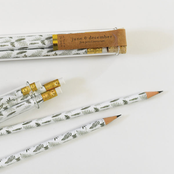 Fern Pencil Terrarium : Set of 5 Pencils