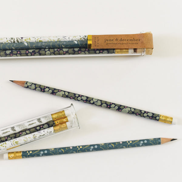 Greenhouse Mix Pencil Terrarium : Set of 5 Pencils