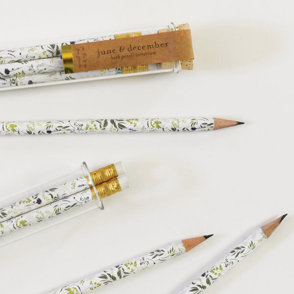 Herb Pencil Terrarium : Set of 5 Pencils