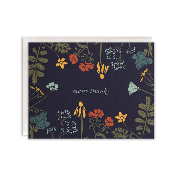 Many Thanks Cards : Boxed Set of 8