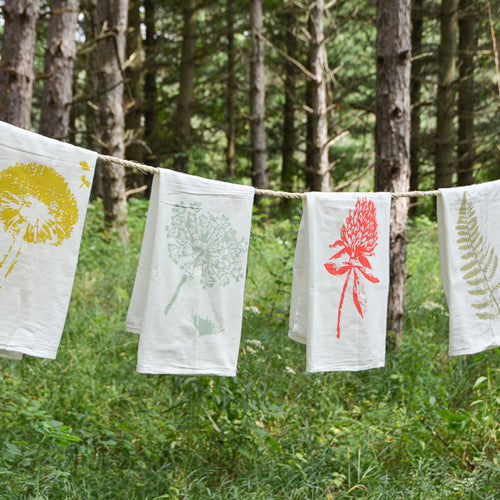 Wild Pretties Towels : Set of 4