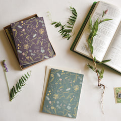 Meadow Cards : Boxed Set of 8