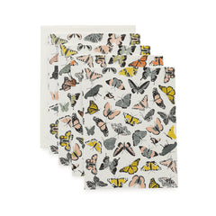 Butterfly Kisses Cards : Boxed Set of 8