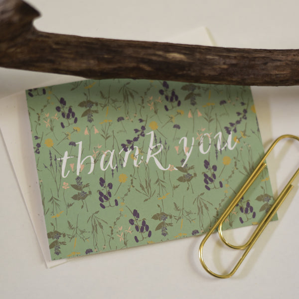 Wild Thank You Cards : Boxed Set of 8