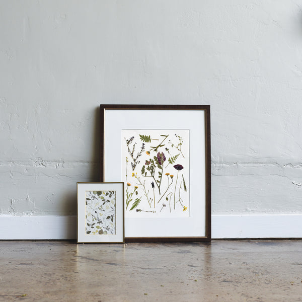 Pressed Tuscan Wildflowers