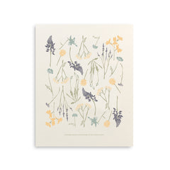 Northern Wildflowers Art Print