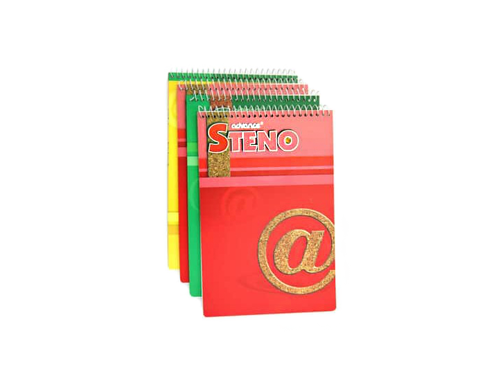 Advance steno notebook assorted