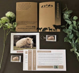 Jeff The Sheep Annual Sponsorship Pack For Brinsley Animal Rescue, Nottingham.