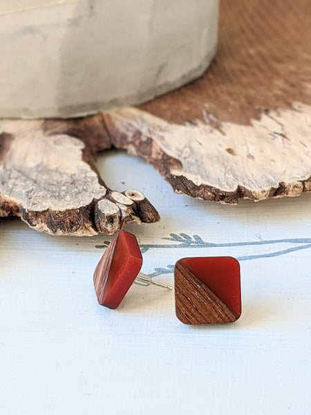 Burnt Clay Wood and Resin Post Earrings