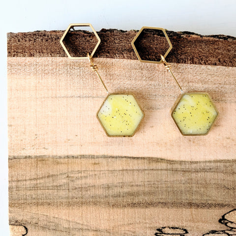 Playful Pendulum Hexagon Brass and Resin Earrings