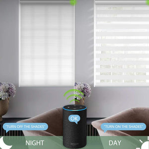 Motorized Zebra Shades Free-Stop Cordless Zebra Blinds Rechargeable Dual Layer Sheer with Cassette Valance Window Blinds (Pure White)