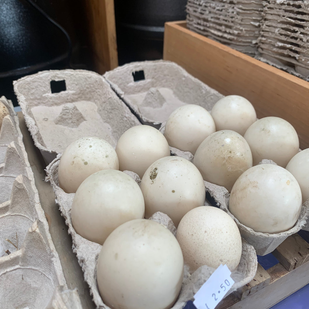 1/2 dozen Duck eggs