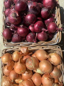 Red & Brown onion