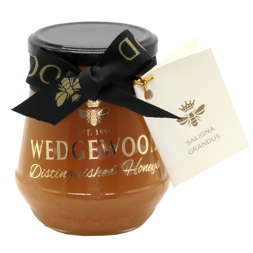Wedgewood Nougat Wedgewood Distinguished Saligna Grandus Honey - Single Tree Species 500g