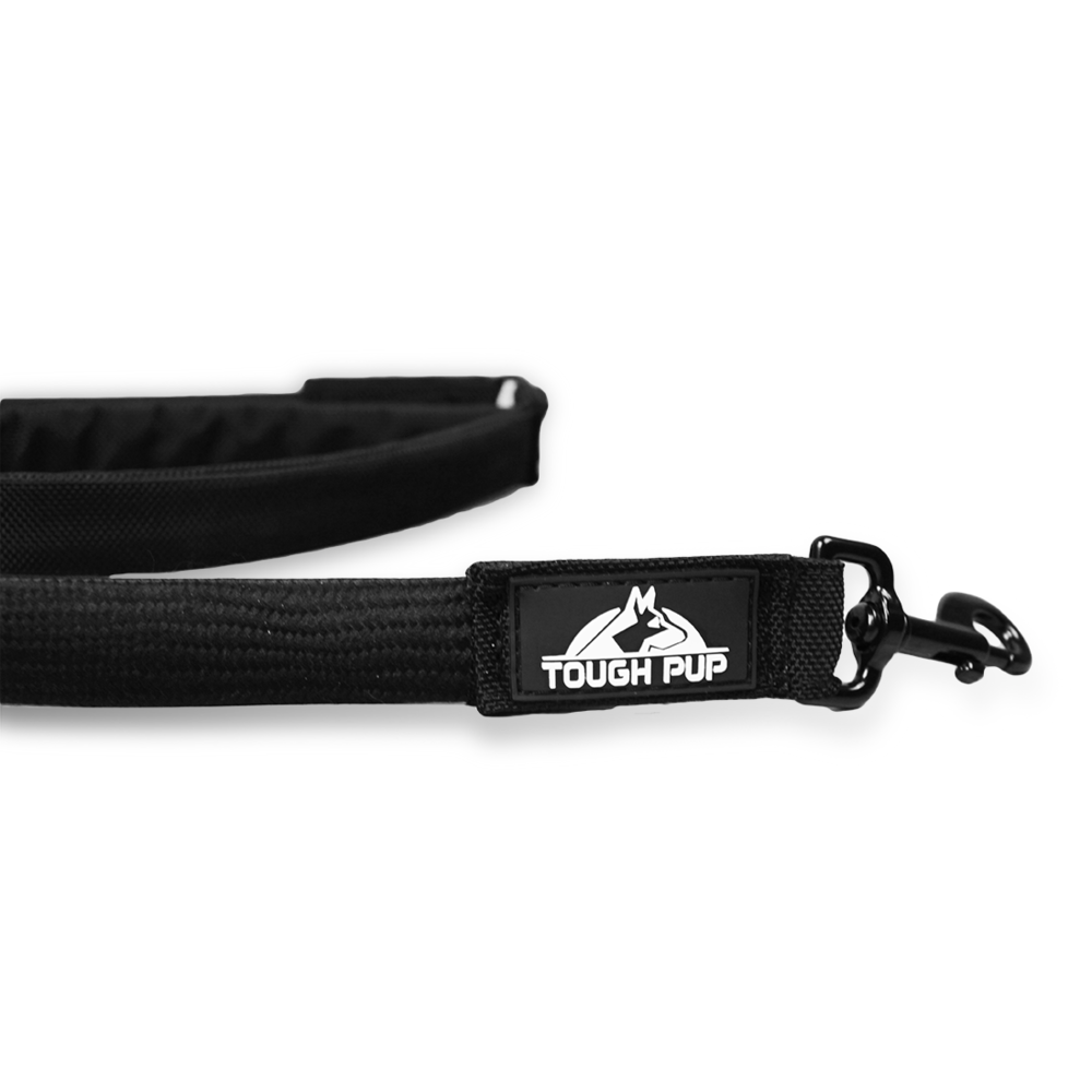 Freedom Flex Dog Leash