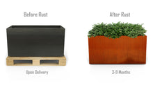 "Load image into Gallery viewer, Corten Steel Rectangular Planter (42"" High)"
