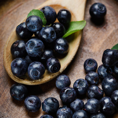 Wild Blueberry Dark Balsamic Vinegar