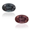 Natural Color Change Garnet  2.04 Carats