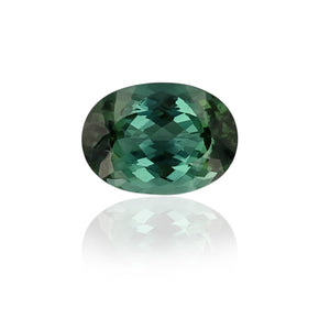 Load image into Gallery viewer, Natural Seaform Tourmaline 23.99 Carats