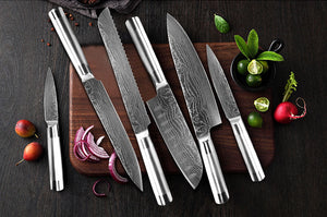 Japanese High Carbon Stainless Steel Chef Knives (6 Pieces)