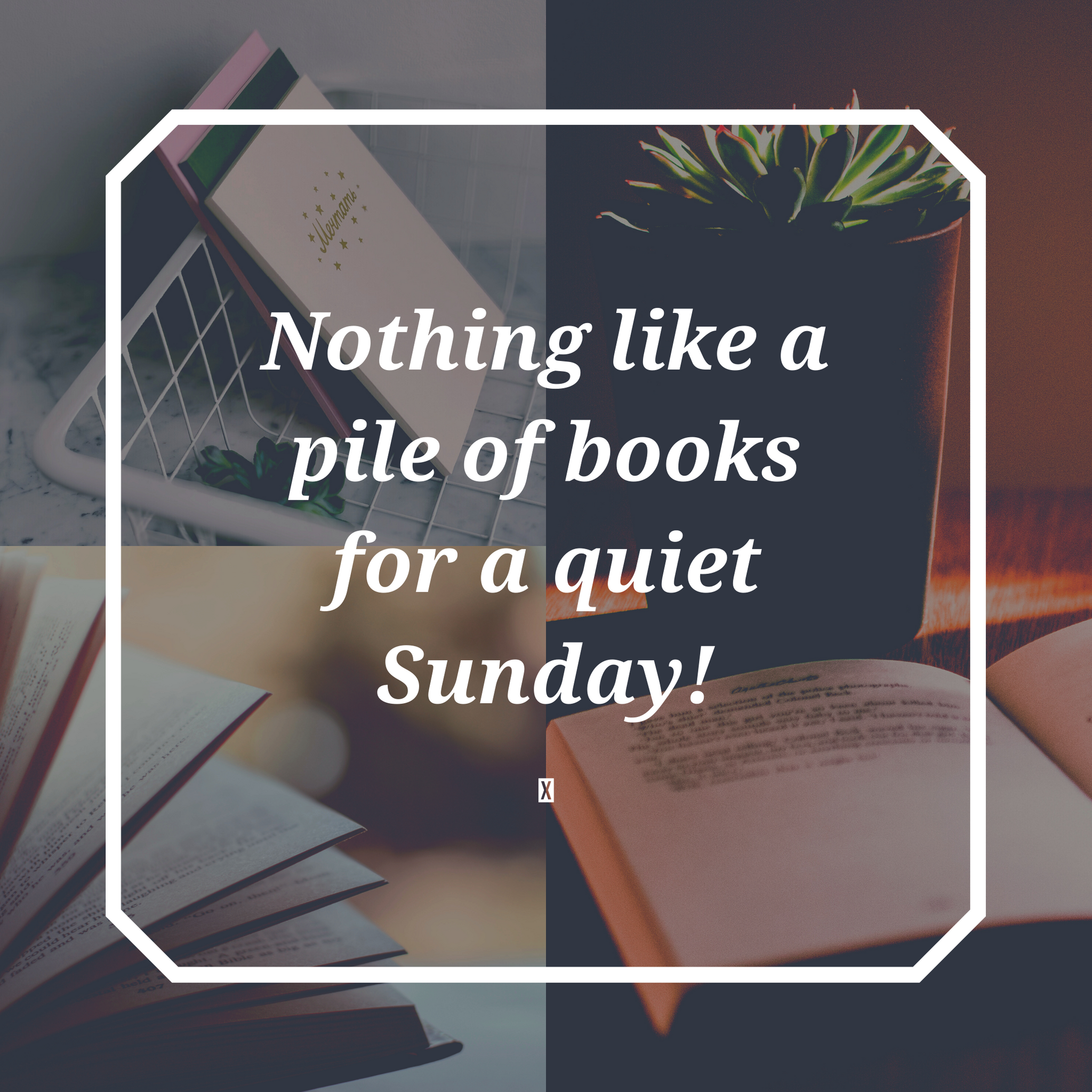 Crazy Bookish Sunday