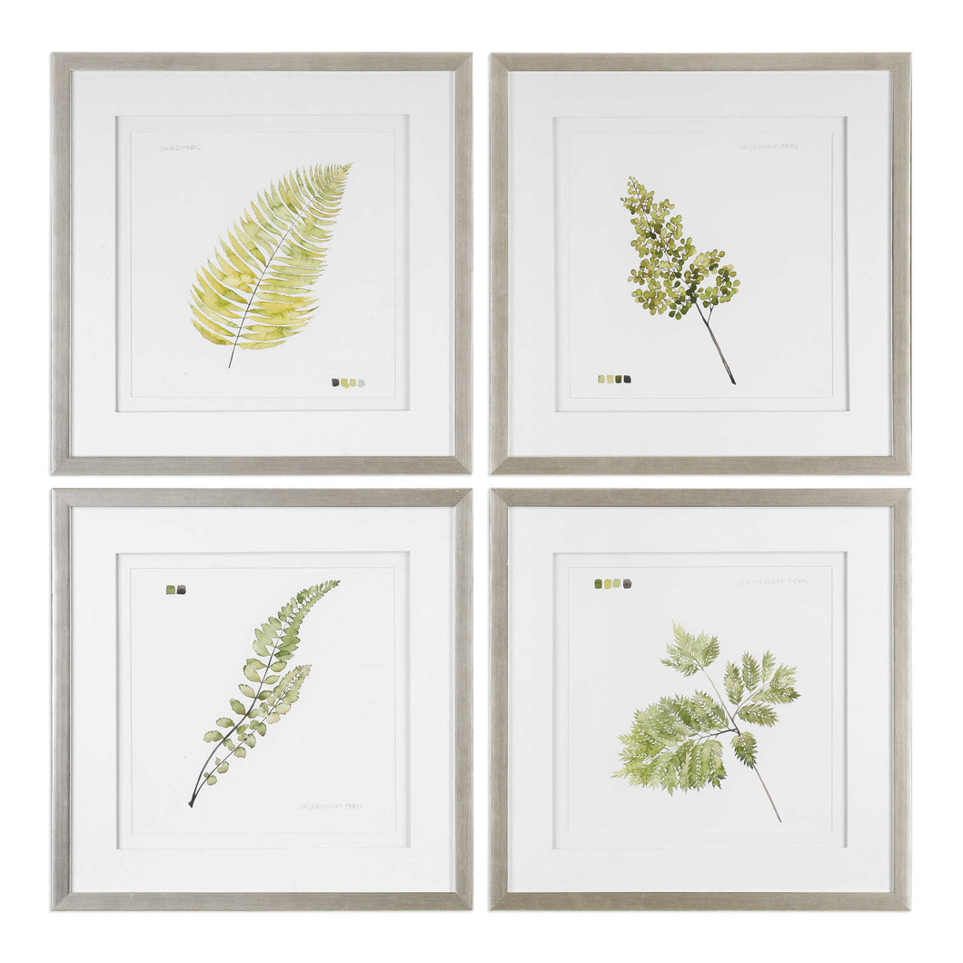 Brushed Leaf Examination Framed Prints, S/4