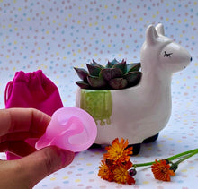 Load image into Gallery viewer, Our Menstrual Cup